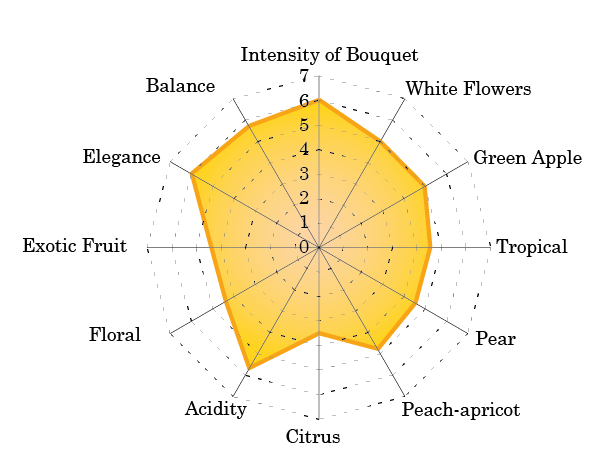 sensory map Prosecco